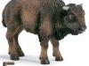 bizon-logopedichni-karti