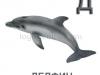 delfin-logopedichni-karti