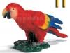 papagal-logopedichni-karti