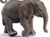 slon-logopedichni-karti