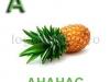 ananas-logopedichni-karti