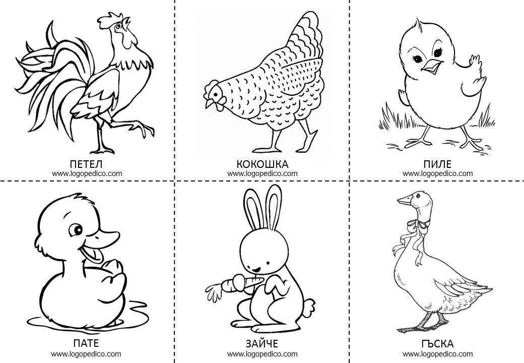 Youutube Kleurplaat Карти за принтиране Животни Логопедико
